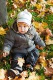Kid in autumn wood Stock Photos