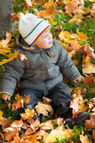Kid in autumn wood Royalty Free Stock Photo