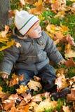 Kid in autumn wood Royalty Free Stock Photo