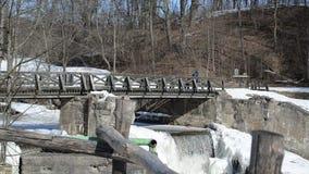 Kid backpack bag walk retro wooden bridge frozen river waterfall stock footage