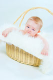 The kid in a basket Stock Photography