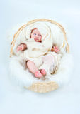 The kid in a basket Royalty Free Stock Photography