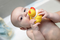 Kid biting toy. The kid biting a toy in a bath royalty free stock photography