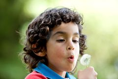 Kid blowing a dandelion Royalty Free Stock Photo