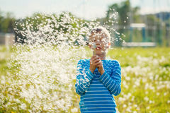 Kid blowing dandelion outdoor on green Royalty Free Stock Photography