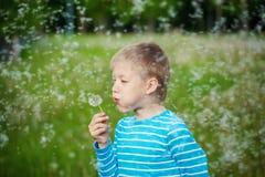 Kid blowing dandelion outdoor on green Stock Images