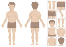 Kid body parts. Human or boy body parts, vector cartoon illustration for kids Stock Photography
