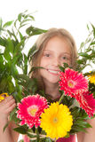 Kid with boquet of flowers. As gift for mum Stock Photography