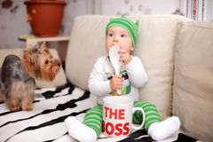 Kid boss and doggie Royalty Free Stock Photography
