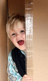 Kid in the box Stock Image
