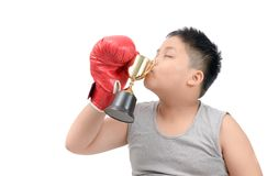Kid boxer kissing trophy isolated on white stock images
