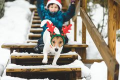 Kid boy and dog wearing holiday costumes playing on ladder of country house. Jack Russell Terrier running down a ladder royalty free stock images