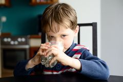 Kid boy drinking milk Stock Images