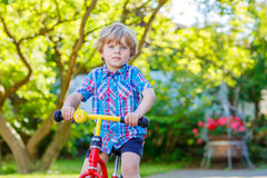 Kid boy driving tricycle or bicycle in garden Stock Image