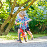 Kid boy driving tricycle or bicycle in garden Royalty Free Stock Image