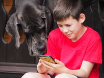 The child and his dog friend look together at the phone. stock photos
