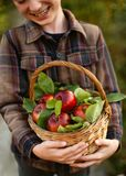 Kid boy holding wicker basket of apples and laughing. Autumn garden scene. royalty free stock photos