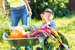 Kid boy and mother in domestic garden. Adorable child standing near the wheelbarrow with harvest. Healthy organic Royalty Free Stock Photography