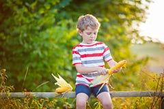 Kid boy with sweet corn on field outdoors Stock Photo