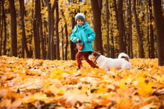 Kid boy walking and playing with dog on leash at outdoor autumn park Royalty Free Stock Image