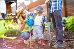Kid boy watering nursery transplant with his mother and brothers in garden Royalty Free Stock Photography