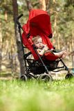 Kid in the buggy Stock Photo