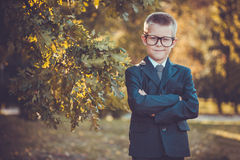 Kid businessman with laptop on the park background Royalty Free Stock Photography