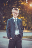 Kid businessman with laptop on the park background Stock Images
