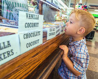 Kid in a Candy Store Royalty Free Stock Photo
