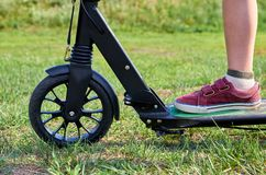 Kid in casual wear on kick scooter in park.  stock photo