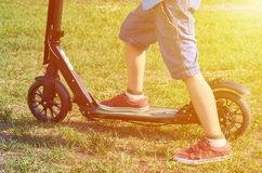 Kid in casual wear on kick scooter in park, sunlight effect.  royalty free stock photo