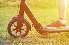 Kid in casual wear on kick scooter in park, sunlight effect.  royalty free stock image
