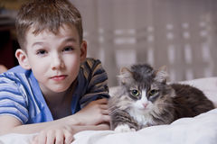 Kid and cat Royalty Free Stock Photography