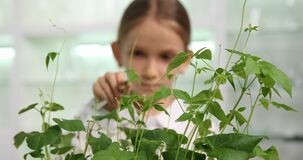 Kid in Chemistry Lab, School Child in Science Growing Seedling Plants, Student Girl Studying Biology Class