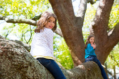 Kid children girls playing riding a tree branch. Up high royalty free stock photo