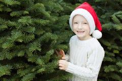 Kid choosing christmas tree Royalty Free Stock Photo