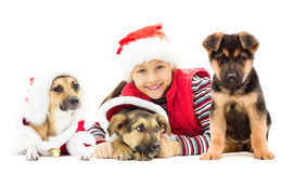 Kid in Christmas hat and puppy. Happy kid in Christmas hat and puppy on a white background isolated Stock Photo