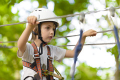 Kid climbing in adventure park. Stock Photography