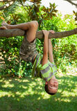 Kid climbing on a tree. Boy hanging from a tree branch in a summer garden Stock Image