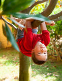 Kid climbing on a tree Stock Photos