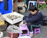 Kid counting money after selling water chestnuts. By the road in amoy city, china stock photos