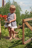 Kid in country. Young girl in country farm Stock Image
