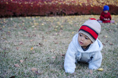 Kid crawls on the grass field. Stock Photo