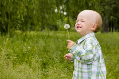 Kid with dandelion Royalty Free Stock Photo