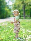 Kid on dandelions field Stock Image