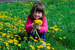 Kid with dandelions Royalty Free Stock Photography