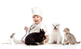 Kid doctor examining pets dog, cat, bunny and rat. Cute small kid doctor examining pets dog, cat, bunny and rat Royalty Free Stock Images