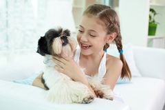 Kid with dog Stock Photo