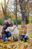 Kid and dog in autumn park Stock Photos