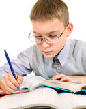 Kid doing Homework stock image